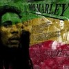 Bob Marley And The Wailers - Coming In From The Cold (Dubbage DnB Mix)v3