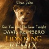Elton John - Can You Feel The Love Tonight (Davis Reimberg - The Lion King Remix)