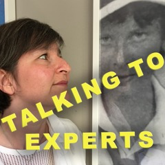 Talking to Experts # 26 ESTER BLENDA NORDSTRÖM med Anna Hylander