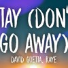 David Guetta Ft. RAYE - Stay (Don't Go Away) (Charlie Lane Remix)