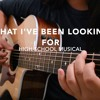 What I've Been Looking For - High School Musical - Fingerstyle Guitar Cover