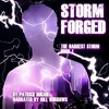 Storm Forged By Patrick Dugan Audiobook Excerpt