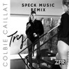 Colbie Caillat - Try [SPECK MUSIC Remix] [Free Download]