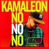 Kamaleon - NO NO NO (AFRO REMIX 2018)