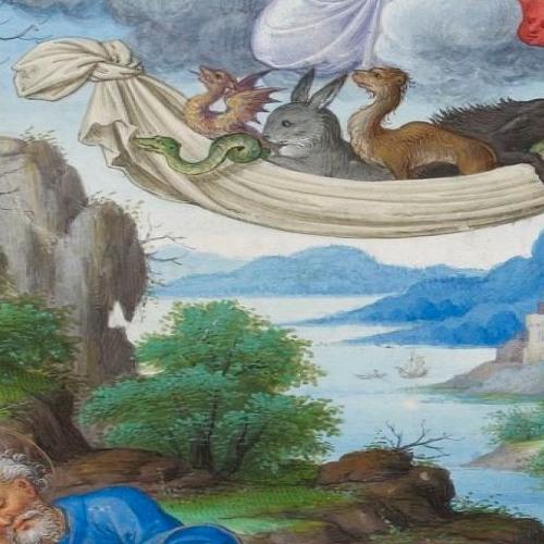 Wideness Of Gods Mercy
