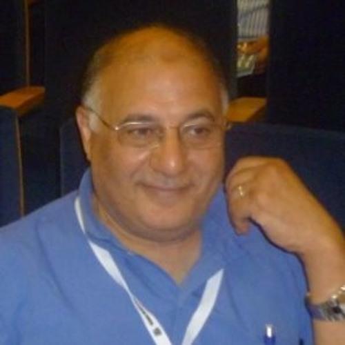 Dr  Hassan Ashmawy Testimony