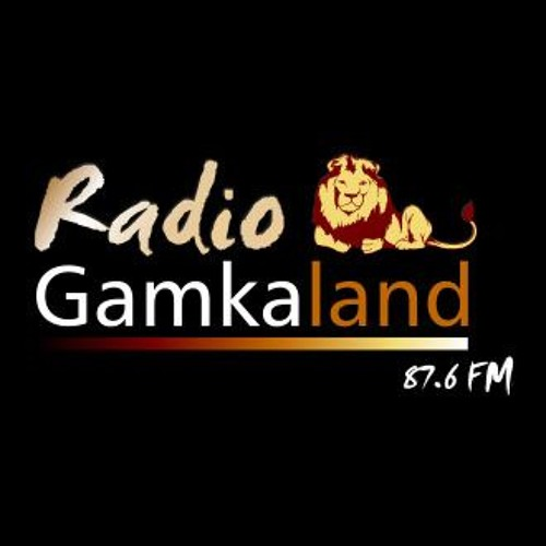 radio-gamkaland-live-with-brendon-visser