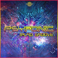 Micro Groove (FREE DOWNLOAD)