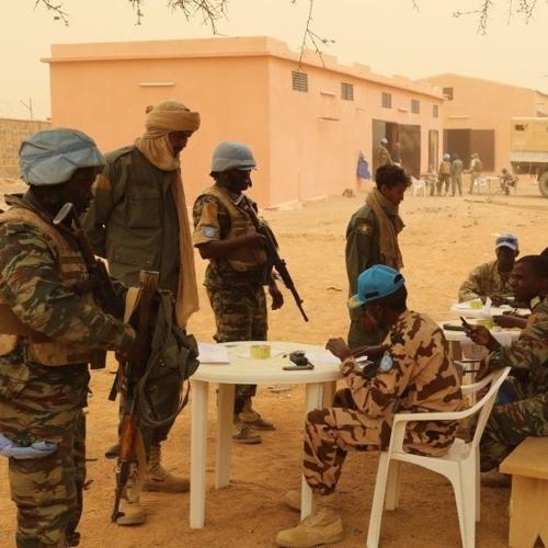 """Mali: des évolutions """"positives"""" dans le processus de désarment"""