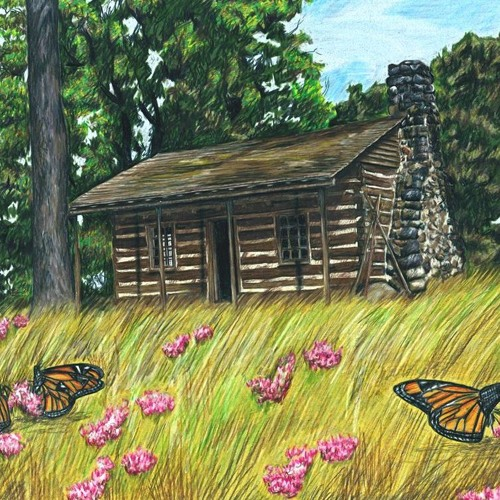 The Archaeology of Two 19th Century Cabins in Kenosha County