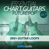 Essential Chart Guitars Vol 5 - Future Pop (300+ guitar loops in WAV format)