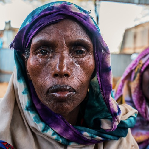 Drought in Somalia could hit not only livelihoods but also 'pastoralists identity'