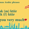 How to say I love you in Lebanese Arabic? :)