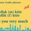How to say I miss you in Lebanese Arabic? :)