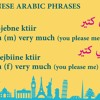Today's phrase: how to say I lIKE you in Lebanese ARabic