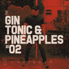 KRIEGER @ gin tonic & pineapples #02