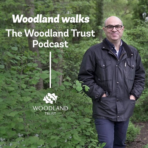 1: Heartwood Forest - planted by the people, for the people