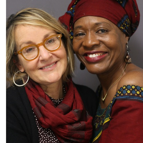 Global Feminist Activism (Emira Woods & Lisa VeneKlasen)