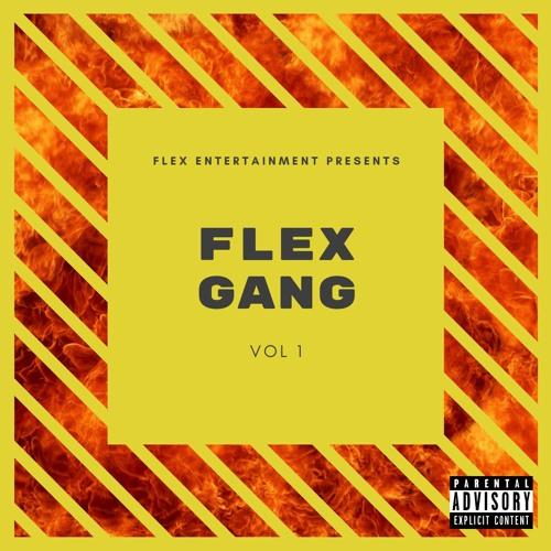 Flex Gang, Vol. 1