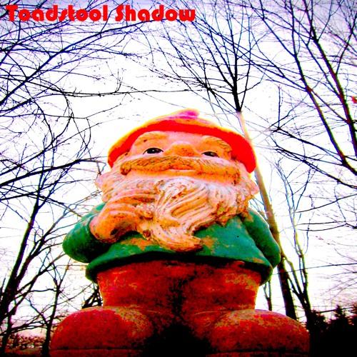"""Toadstool Shadow """"Rainbow Nights (and Rainbow Days)"""" EP"""