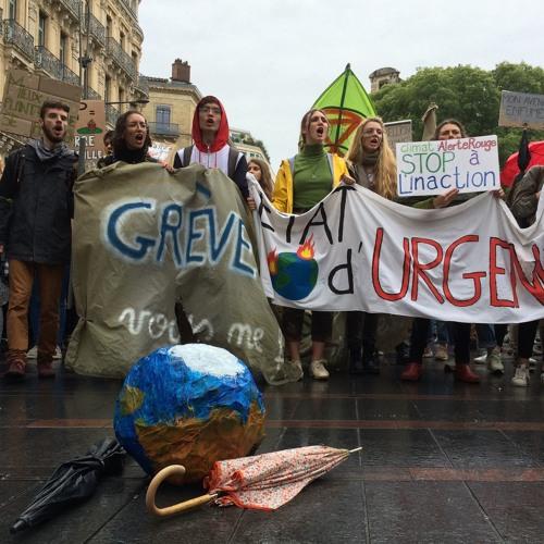 À Toulouse, les jeunes de 7 à 77 Ans marchent pour le climat - Cécile Marchand Ménard