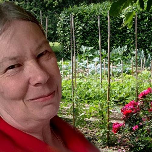 Agnès Millet 26 Mai 2019 -  Le charbon végétal activé.