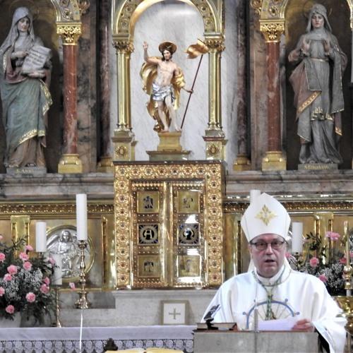 Prisluhni pridigi med sveto mašo na 10. zahvalnem dnevu slepih in slabovidnih Slovenije