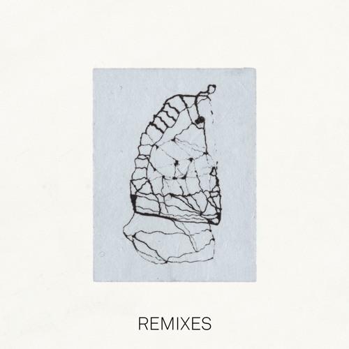 Acud - Fliegepeter (Lukas Endhardt Remix)