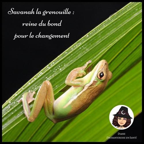 #2 - Savanah la grenouille : reine du bond pour le  changement - Diane Enchanteresse en Santé