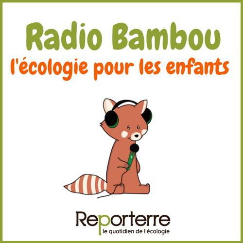 Radio Bambou : l'écologie pour les enfants