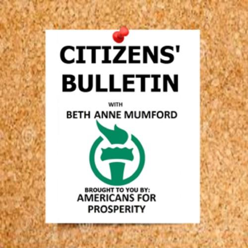 CITIZENS BULLETIN 5 - 27 - 19 - -ANNA MCCAUSLIN - -CRIMINAL JUSTICE REFORM
