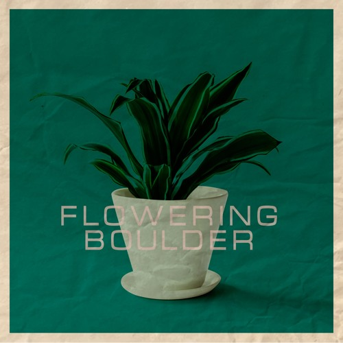 Flowering Boulder