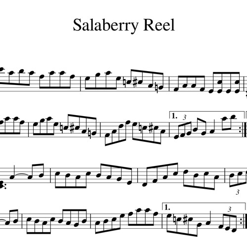 Salaberry Reel