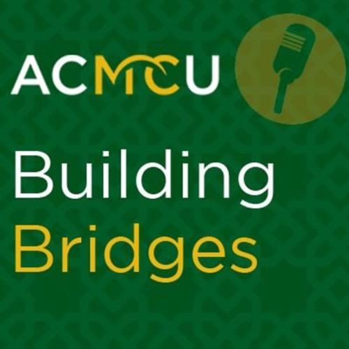 Building Bridges - Dr. Ronald Stockton