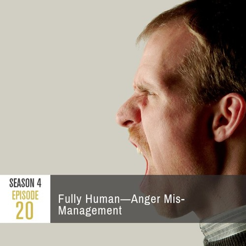 Season 4 Episode 20 - Fully Human: Anger Mis-Management