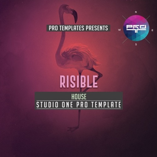 Risible Studio One Pro Template