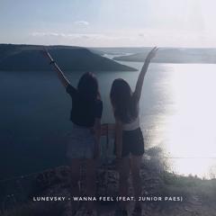 Wanna Feel (feat. Junior Paes)