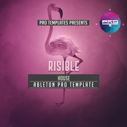 Risible Ableton Pro Template