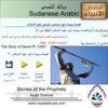 Download قصة سيدنا داود صاحب المزامير عليه السلام - 7 بالعامية السودانية Mp3