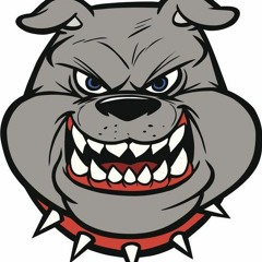 BIG DOG MIX 3.0