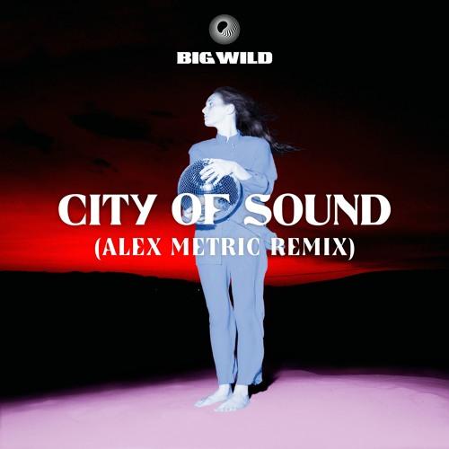 Big Wild - City Of Sound (Alex Metric Remix)