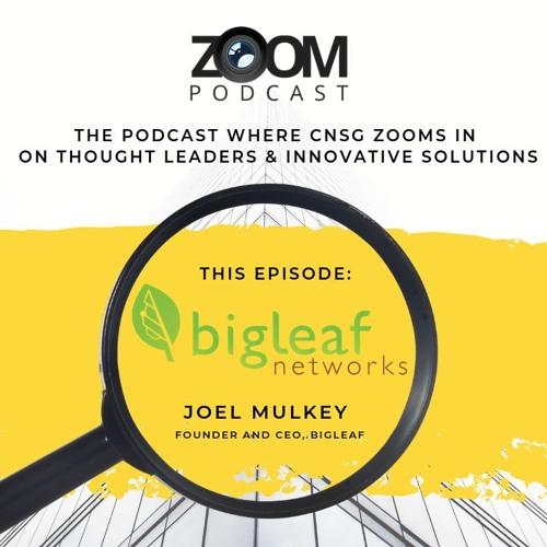 The Zoom - Episode 4 - Bigleaf