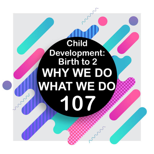 107 | Child Development Part 2: Birth Through the First Two Years | Why We Do What We Do