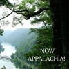 """""""Now, Appalachia"""" Interview with West Virginia author Heather Gilbert"""