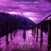 Kygo, Chelsea Cutler - Not Ok (Cerberuh Remix)