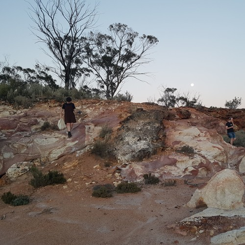 improvisation at Redcliff, Koorda