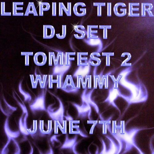 Live DJ set (Tomfest 2)