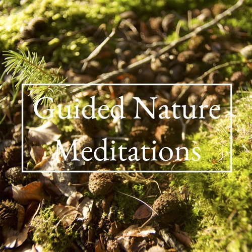 Guided Nature Meditations