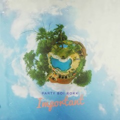 Party Boi Rokk - Important Prod. Ty on da Track