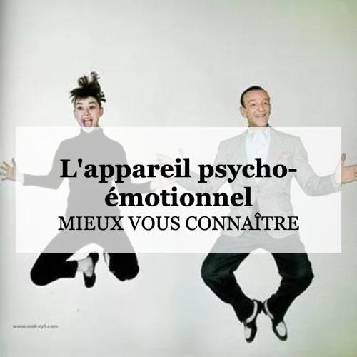 L'appareil psycho-émotionnel, késako ? Cours 1 | EnVie
